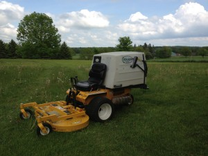 lawn care, grass cutting, mowing