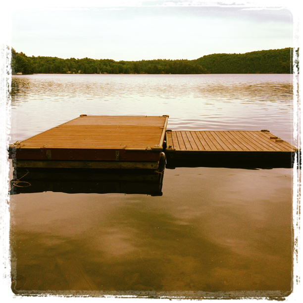 Dock Staining